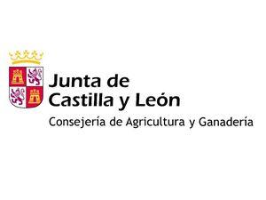 La Junta invierte más de 5,8 millones de euros en obras de infraestructura rural para continuar con la modernización de zonas regables en León y Zamora e impulsar la mejora de una presa en la provincia de Ávila