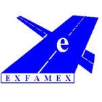 EXFAMEX logo antiguo
